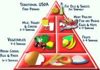 old-food-pyramid